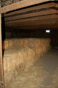 Stored hay, for the off season