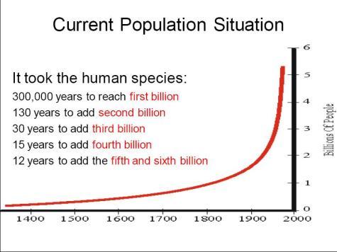 popbybillions